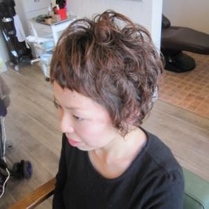 hair-parm1
