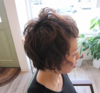 hair-parm2